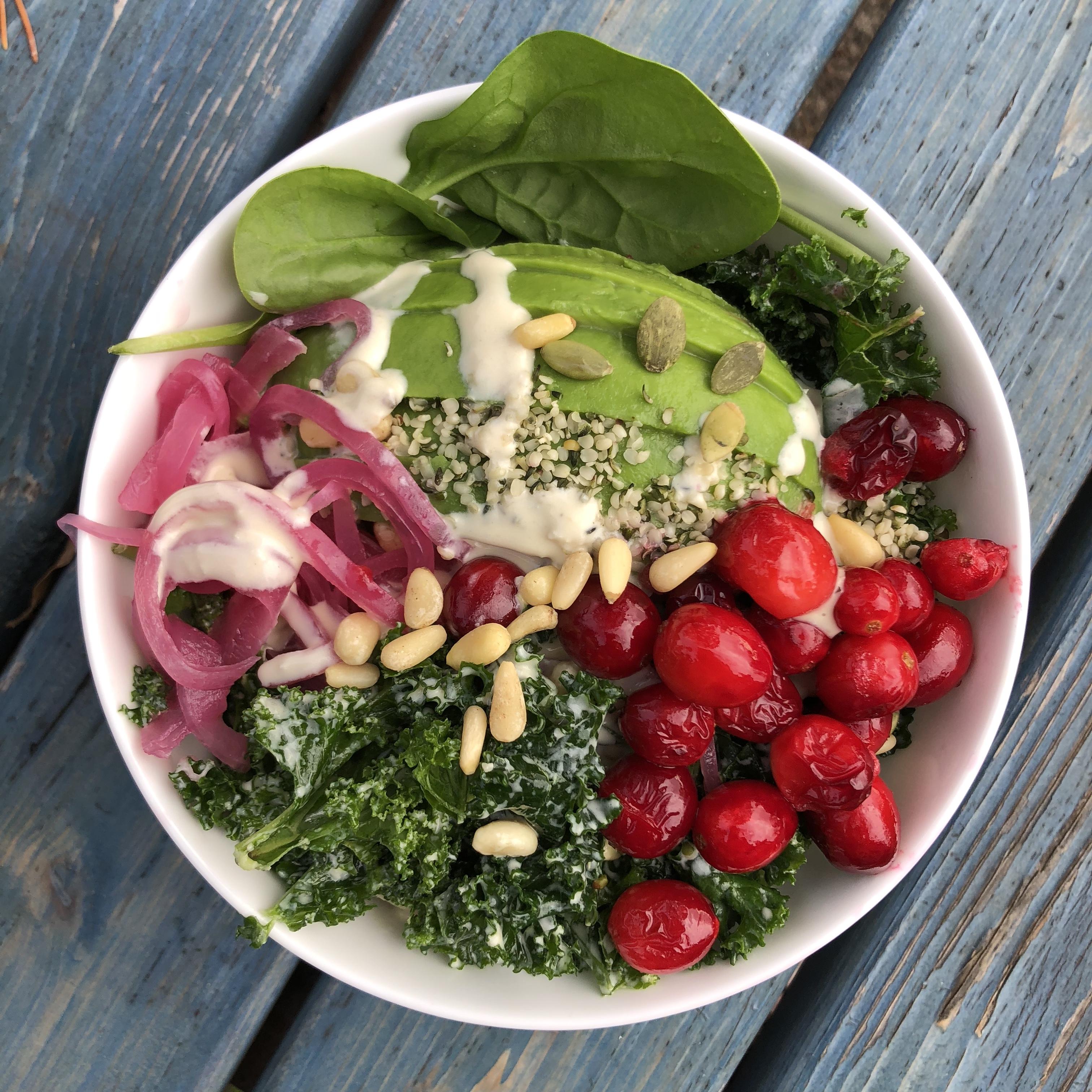 Tahini, Kale & Cranberry Winter Omega Superfood Salad (Vegan & Paleo)