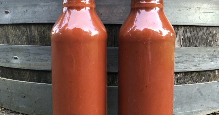 Cultured Tomato Sauce (Probiotic Ketchup)
